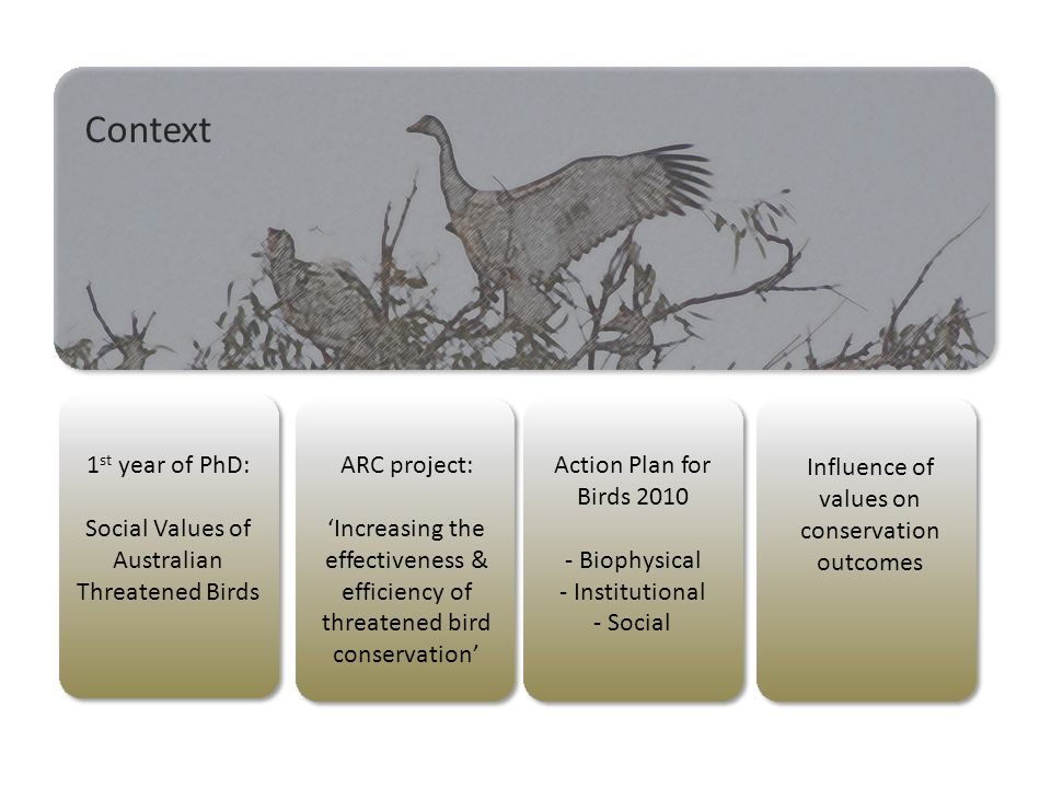 Context ARC project: 'Increasing the effectiveness & efficiency of threatened bird conservation' Action Plan for Birds 2010 - Biophysical - Institutional - Social Influence of values on conservation outcomes 1 st year of PhD: Social Values of Australian Threatened Birds