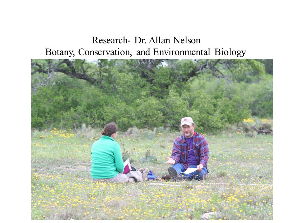 Botany Teach Plant Taxonomy and examine distribution native, exotic, rare, or otherwise unusual plants such as skullcap