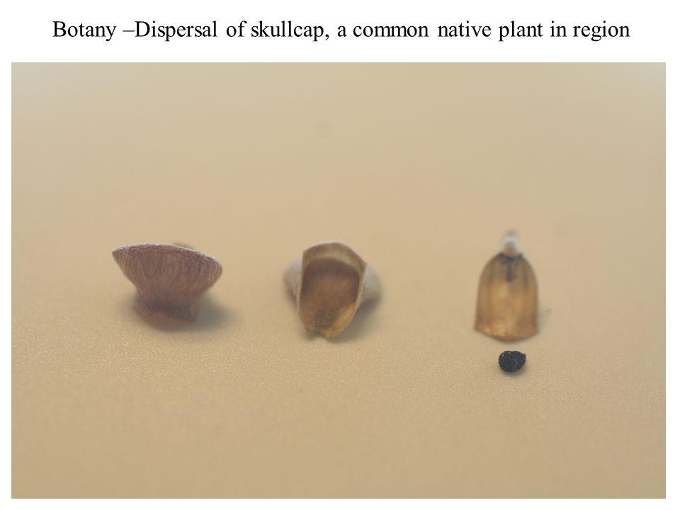 Conservation Biology- Rare Texas plant species habitat