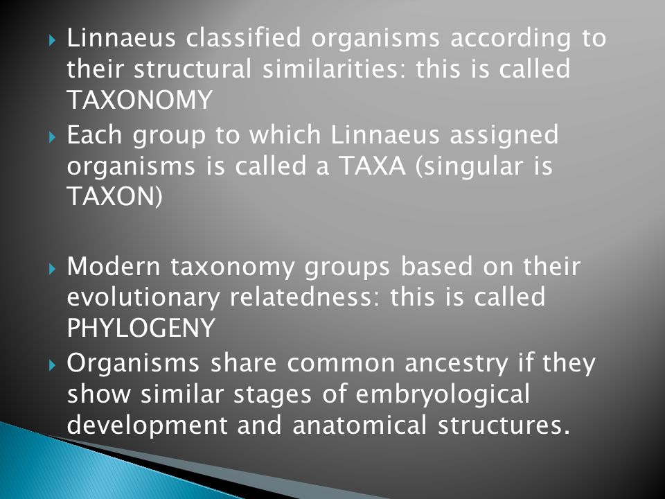  Linnaeus classified organisms according to their structural similarities: this is called TAXONOMY  Each group to which Linnaeus assigned organisms is called a TAXA (singular is TAXON)  Modern taxonomy groups based on their evolutionary relatedness: this is called PHYLOGENY  Organisms share common ancestry if they show similar stages of embryological development and anatomical structures.