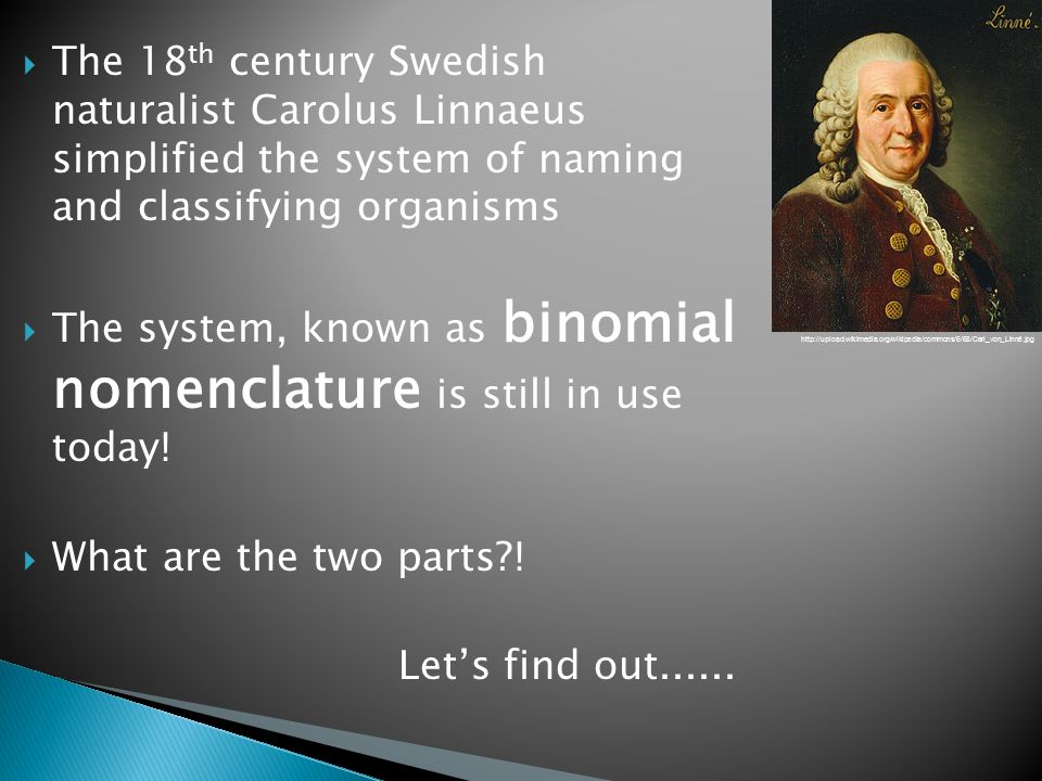  The 18 th century Swedish naturalist Carolus Linnaeus simplified the system of naming and classifying organisms  The system, known as binomial nomenclature is still in use today.