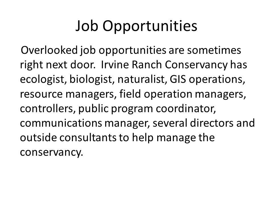 Job Opportunities Overlooked job opportunities are sometimes right next door.