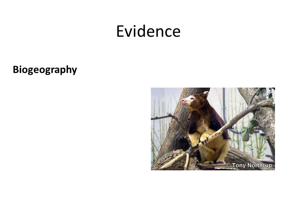 Evidence Biogeography