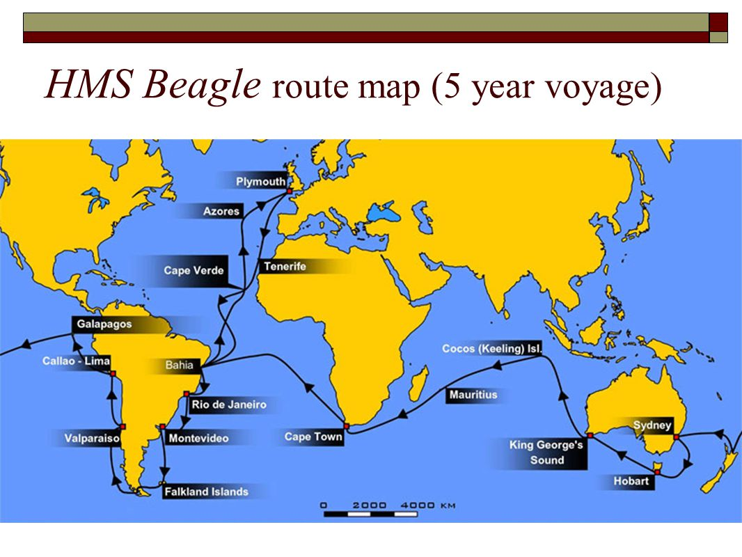 HMS Beagle route map (5 year voyage)