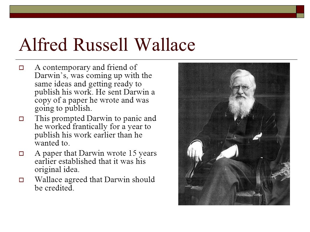 Alfred Russell Wallace  A contemporary and friend of Darwin's, was coming up with the same ideas and getting ready to publish his work.