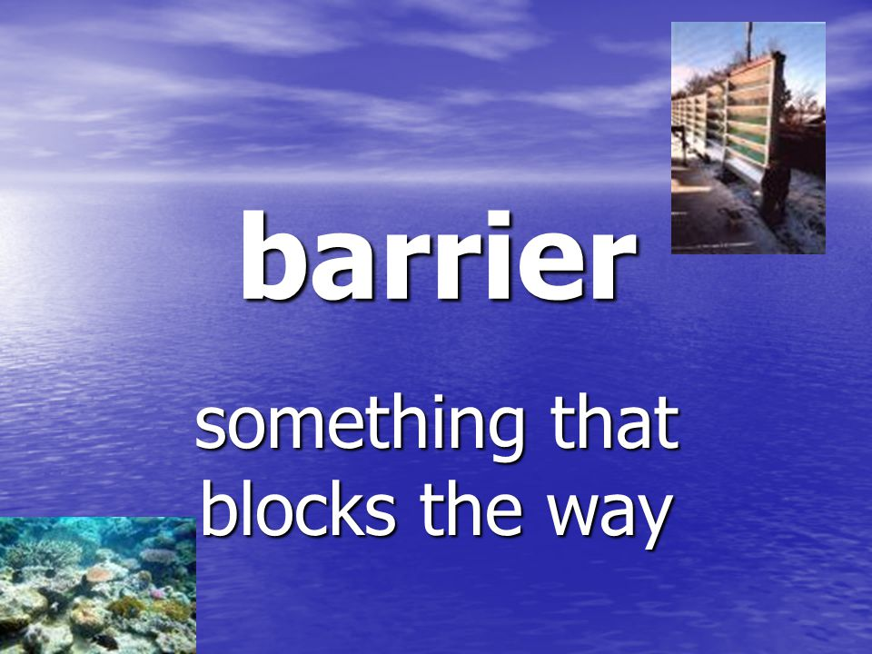 barrier something that blocks the way