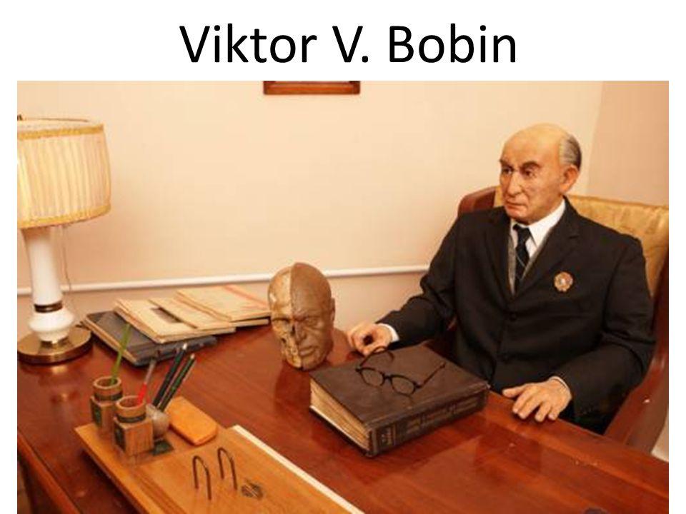 Viktor V. Bobin