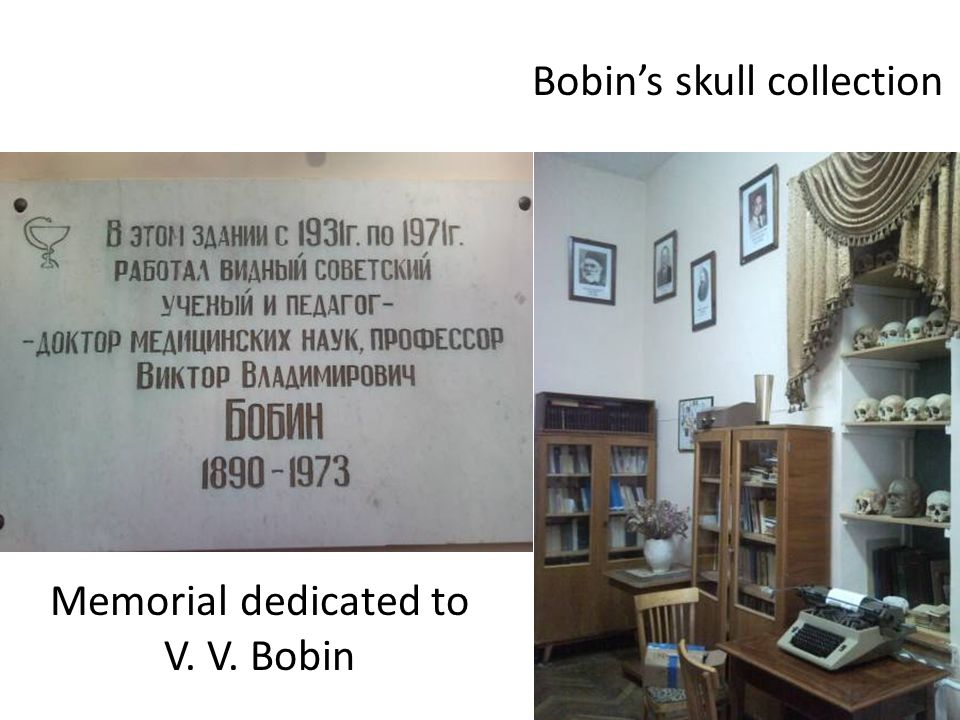 Memorial dedicated to V. V. Bobin Bobin's skull collection