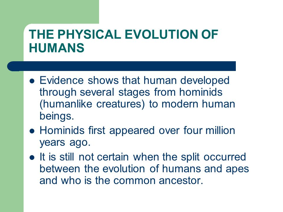 THE PHYSICAL EVOLUTION OF HUMANS Evidence shows that human developed through several stages from hominids (humanlike creatures) to modern human beings.