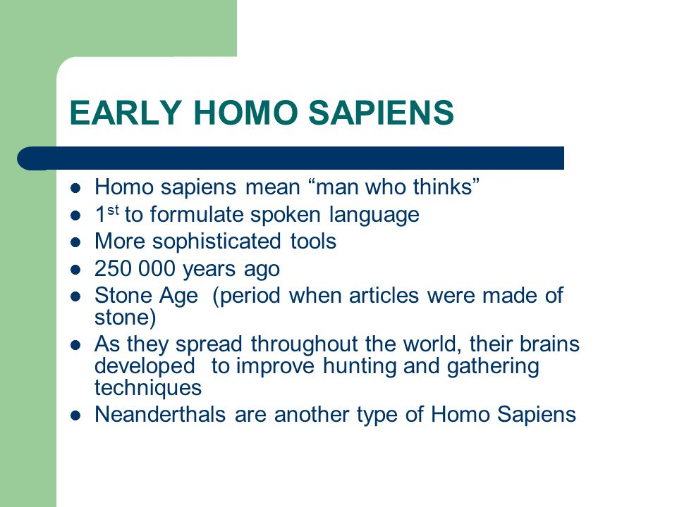 EARLY HOMO SAPIENS Homo sapiens mean man who thinks 1 st to formulate spoken language More sophisticated tools 250 000 years ago Stone Age (period when articles were made of stone) As they spread throughout the world, their brains developed to improve hunting and gathering techniques Neanderthals are another type of Homo Sapiens