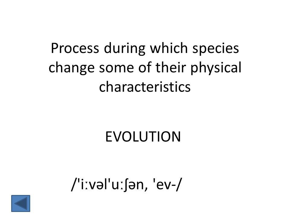 EVOLUTION / iːvəl uːʃən, ev-/ Process during which species change some of their physical characteristics