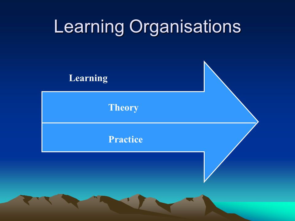Learning Organisations Theory Practice Learning