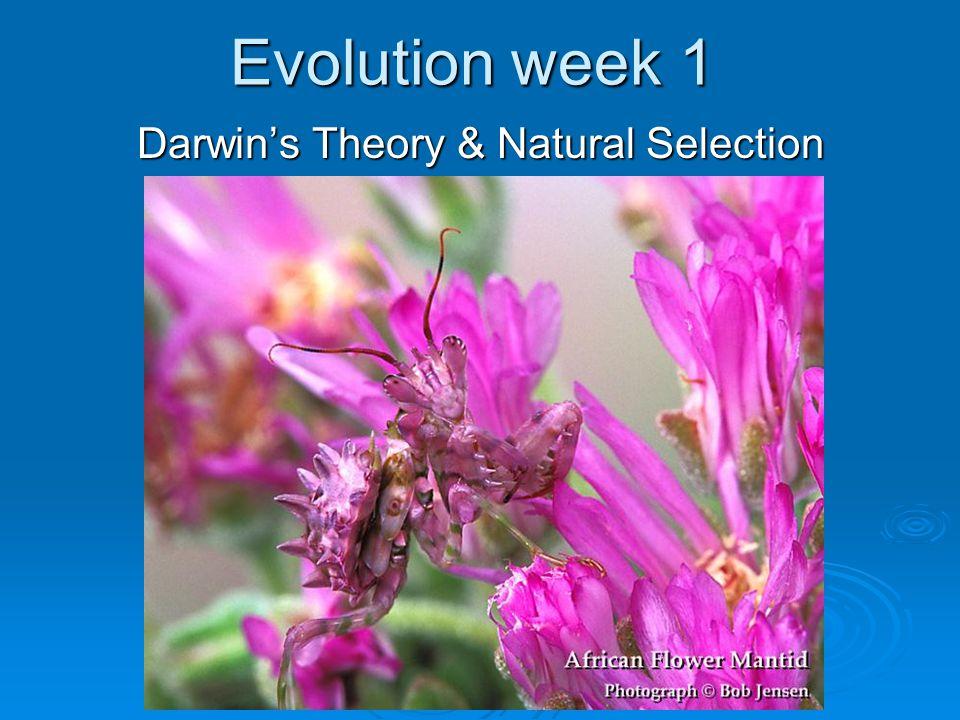 Evolution week 1 Darwin's Theory & Natural Selection