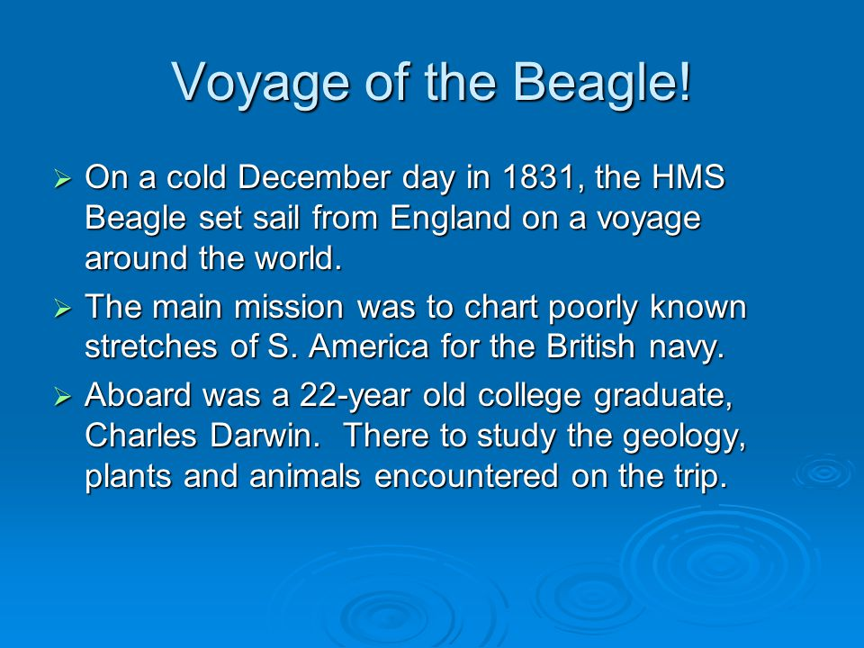 Voyage of the Beagle.