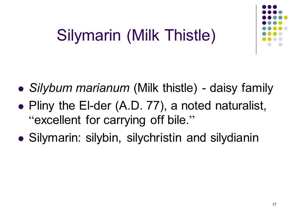"""17 Silymarin (Milk Thistle) Silybum marianum (Milk thistle) - daisy family Pliny the El-der (A.D. 77), a noted naturalist, """" excellent for carrying of"""