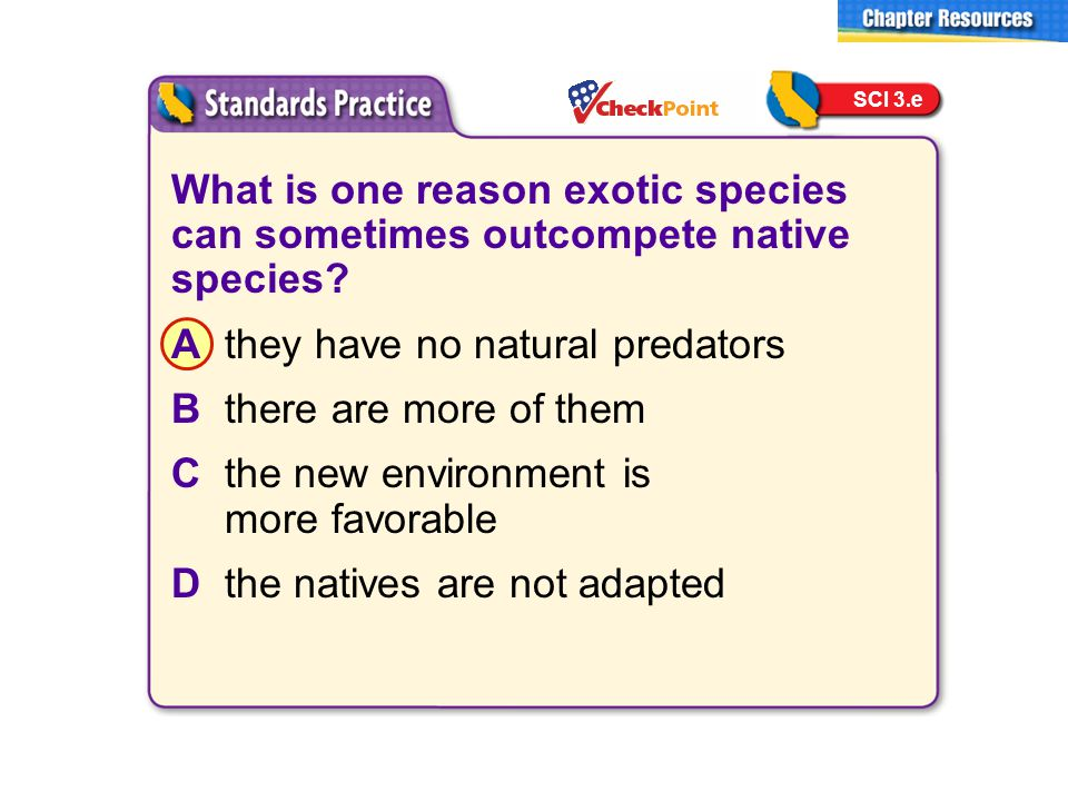 What is one reason exotic species can sometimes outcompete native species? Athey have no natural predators Bthere are more of them Cthe new environmen