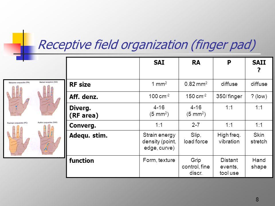 8 Receptive field organization (finger pad) SAIRAPSAII .