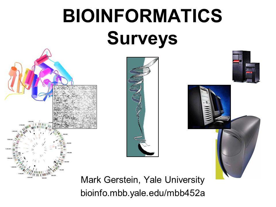 1 (c) Mark Gerstein, 1999, Yale, bioinfo.mbb.yale.edu BIOINFORMATICS Surveys Mark Gerstein, Yale University bioinfo.mbb.yale.edu/mbb452a