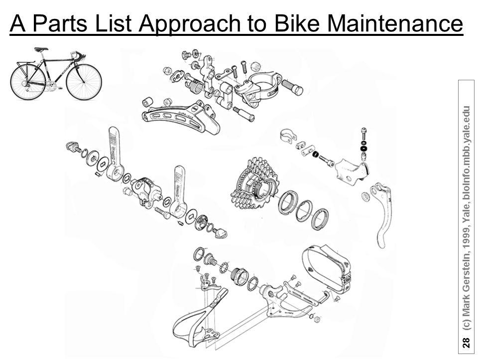 28 (c) Mark Gerstein, 1999, Yale, bioinfo.mbb.yale.edu A Parts List Approach to Bike Maintenance