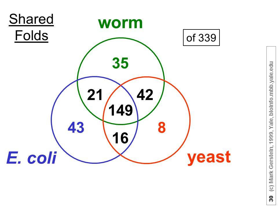 30 (c) Mark Gerstein, 1999, Yale, bioinfo.mbb.yale.edu Shared Folds of 339 worm yeast E.