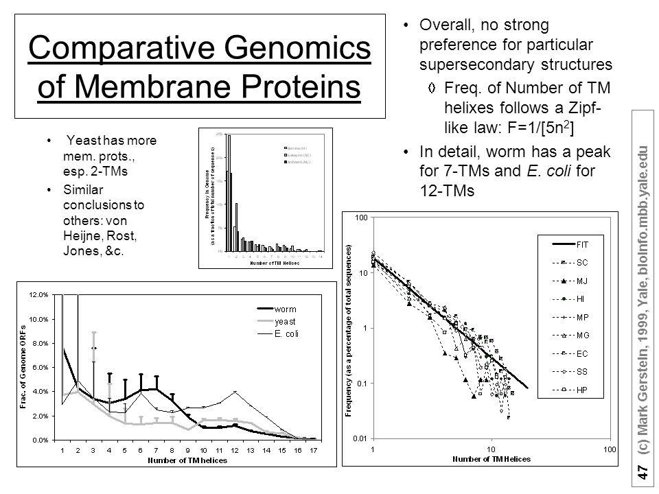 47 (c) Mark Gerstein, 1999, Yale, bioinfo.mbb.yale.edu Comparative Genomics of Membrane Proteins Yeast has more mem.