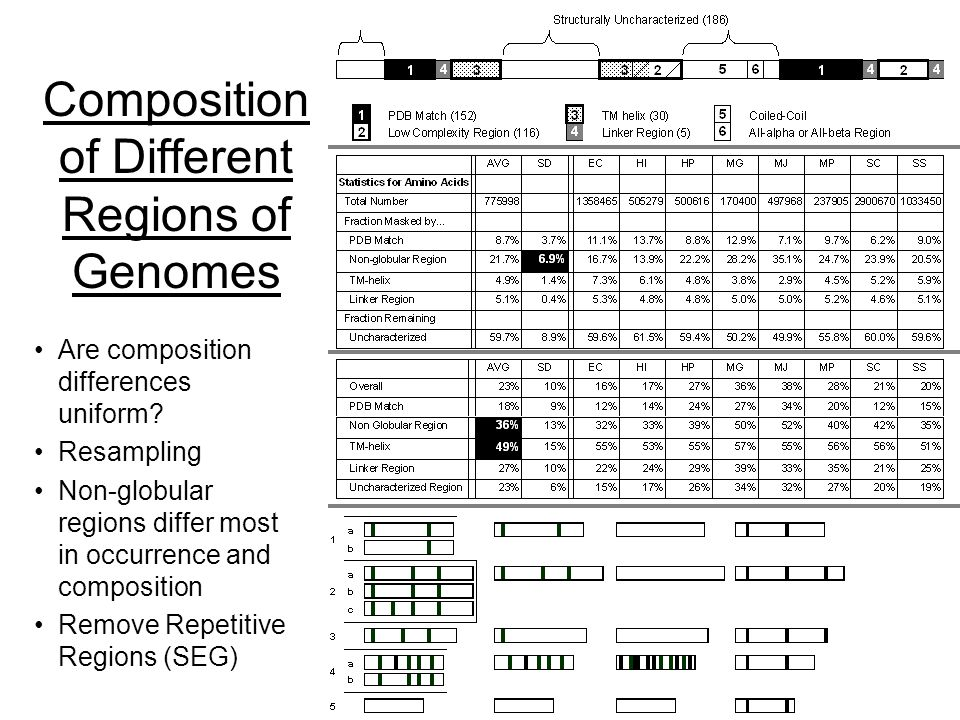 64 (c) Mark Gerstein, 1999, Yale, bioinfo.mbb.yale.edu Composition of Different Regions of Genomes Are composition differences uniform.
