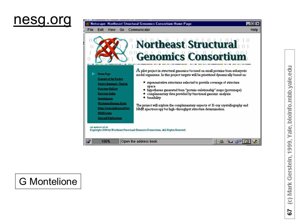 67 (c) Mark Gerstein, 1999, Yale, bioinfo.mbb.yale.edu nesg.org G Montelione