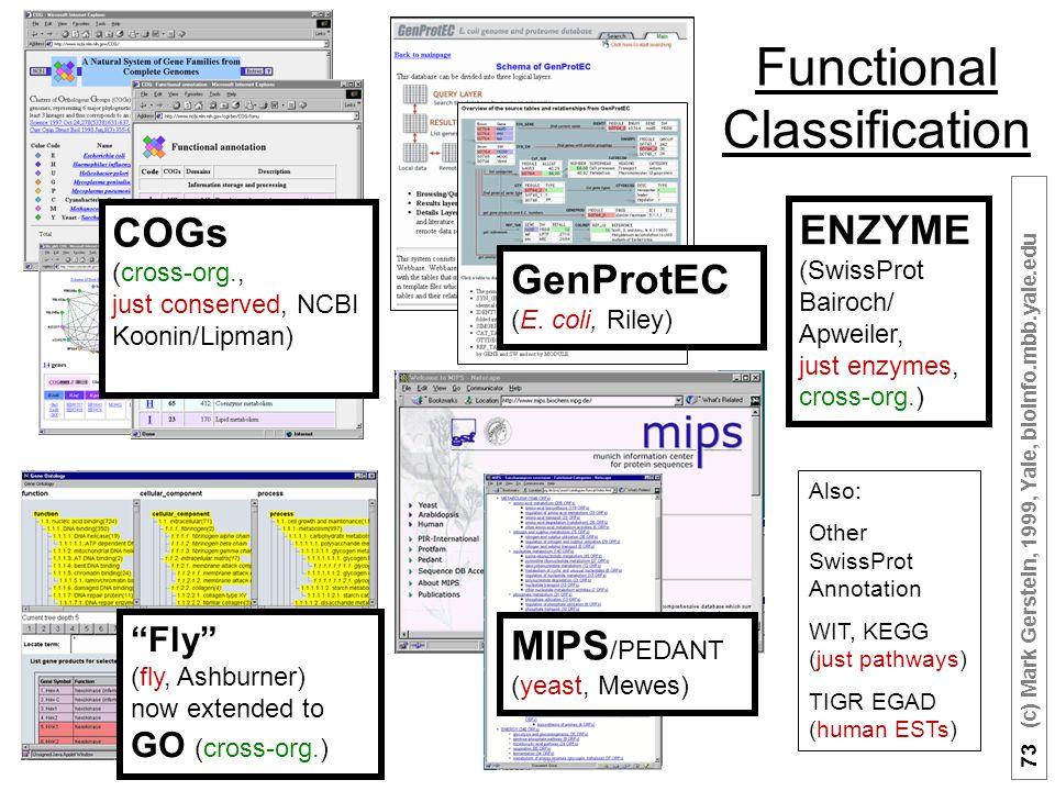73 (c) Mark Gerstein, 1999, Yale, bioinfo.mbb.yale.edu Functional Classification GenProtEC (E.