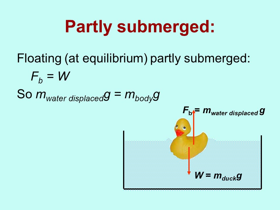 Partly submerged: Floating (at equilibrium) partly submerged: F b = W So m water displaced g = m body g W = m duck g F b = m water displaced g