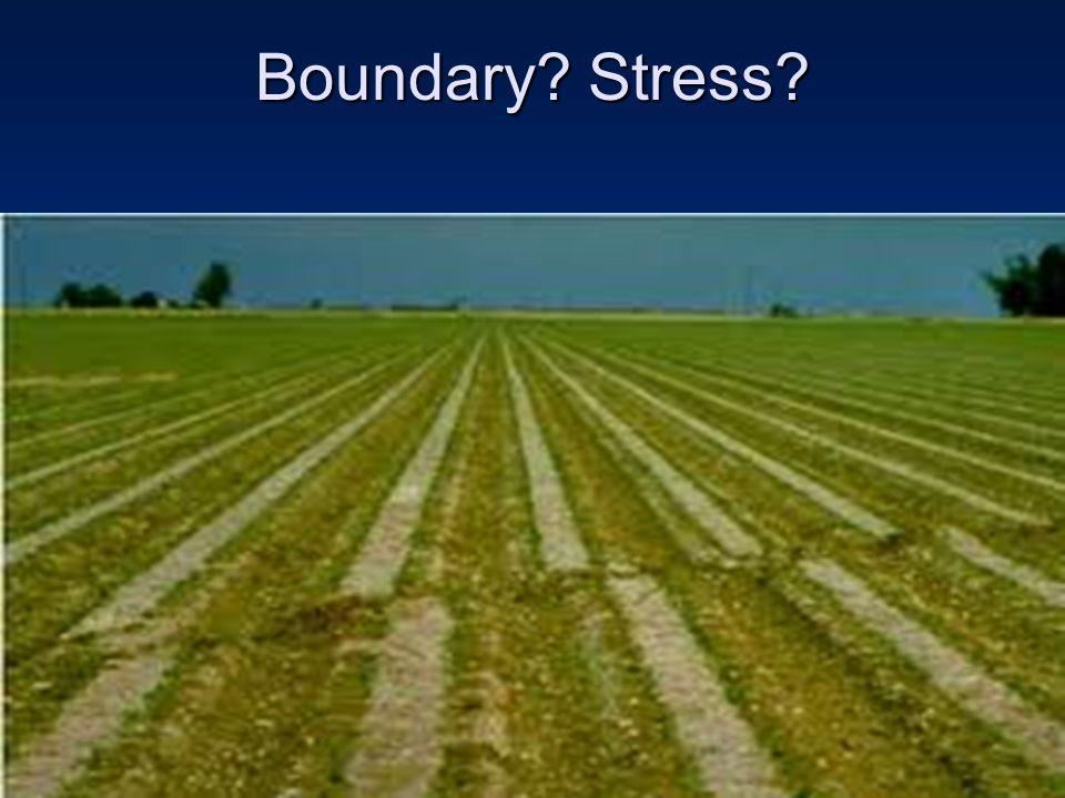 Boundary Stress
