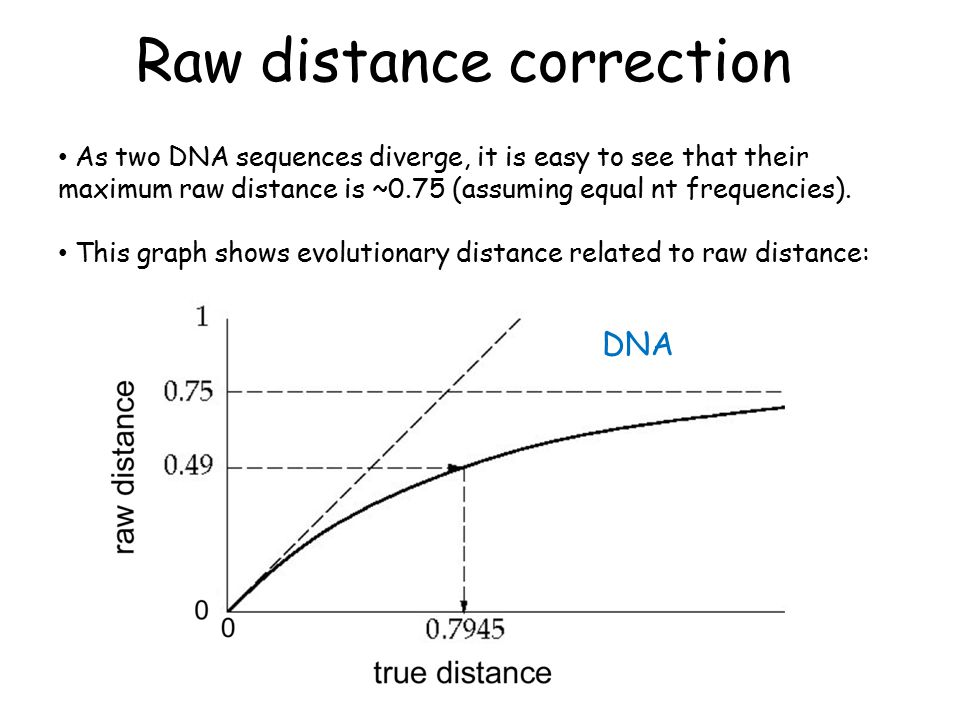 Raw distance correction DNA As two DNA sequences diverge, it is easy to see that their maximum raw distance is ~0.75 (assuming equal nt frequencies).