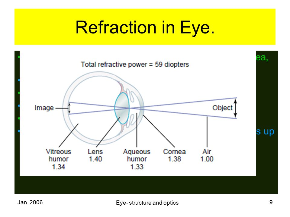 Jan. 2006 Eye- structure and optics 9 Refraction in Eye. When light rays from a distant object falls on the cornea, it is refracted: On entry into cor