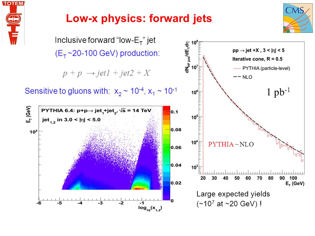 "Inclusive forward ""low-E T "" jet (E T ~20-100 GeV) production: Sensitive to gluons with: x 2 ~ 10 -4, x 1 ~ 10 -1 p + p → jet1 + jet2 + X Large expect"