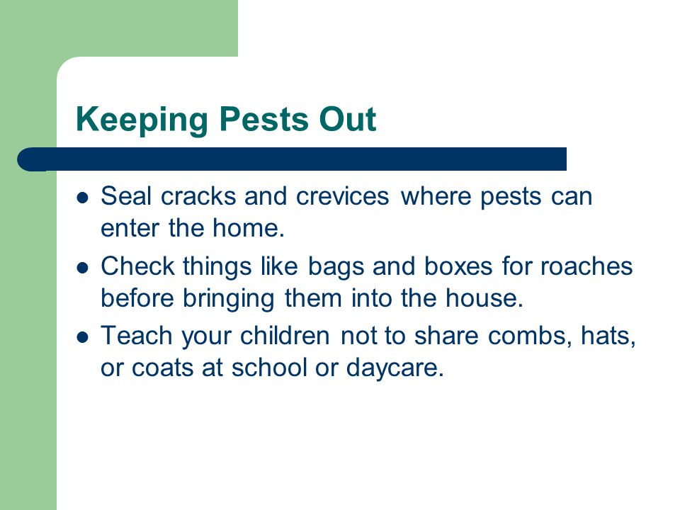 Keeping Pests Out Seal cracks and crevices where pests can enter the home.