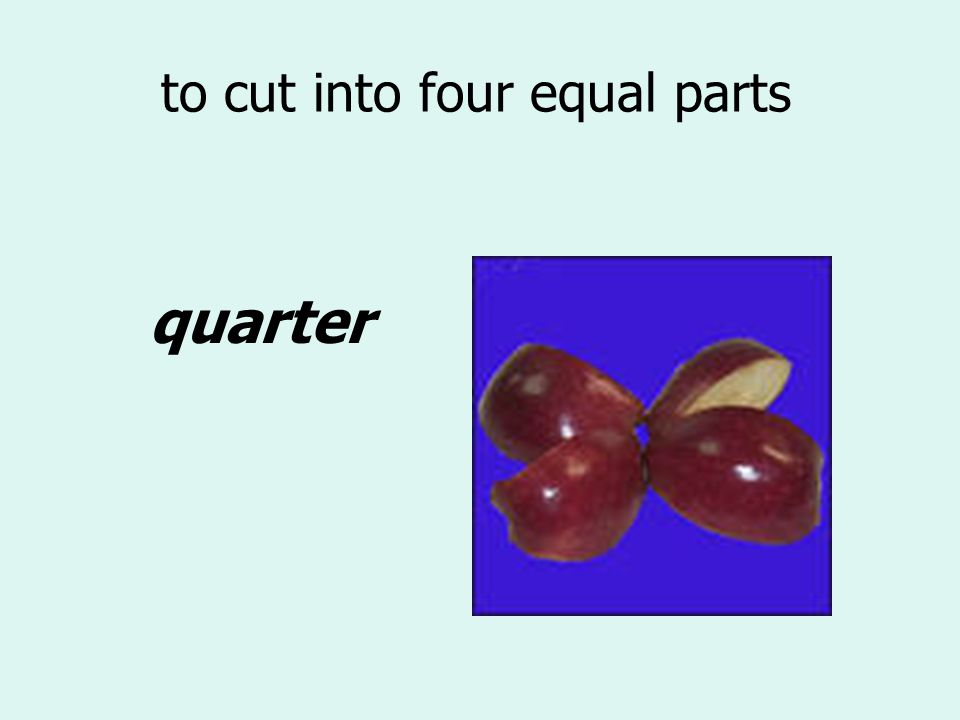 to cut into four equal parts quarter