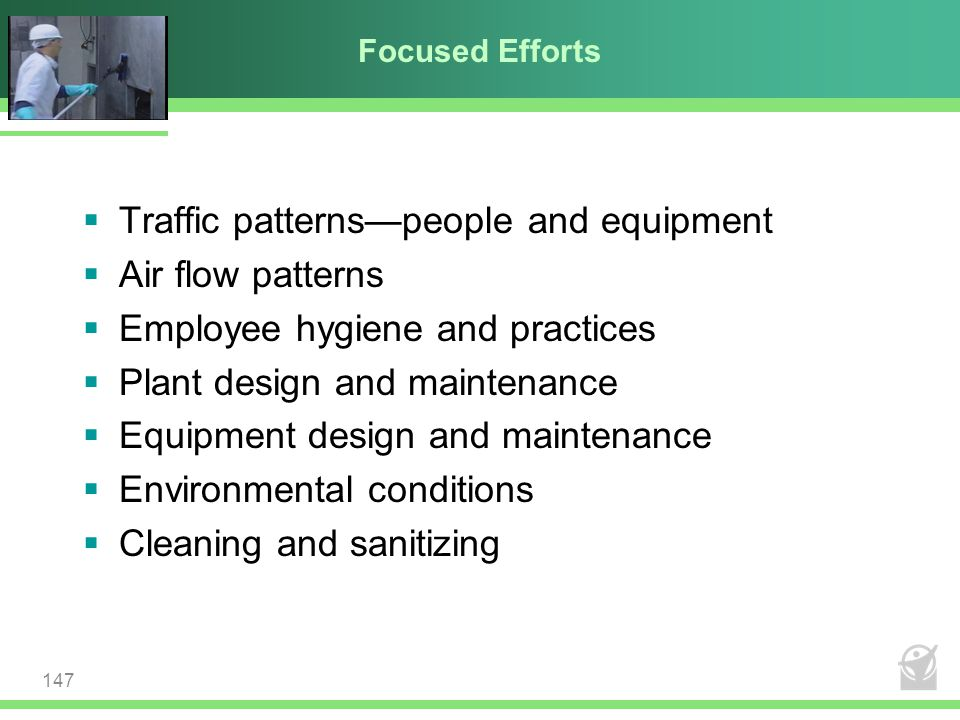 Focused Efforts  Traffic patterns—people and equipment  Air flow patterns  Employee hygiene and practices  Plant design and maintenance  Equipmen