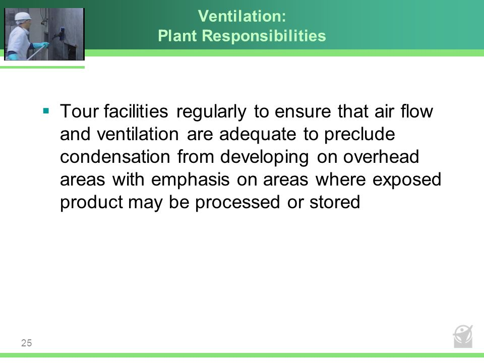 Ventilation: Plant Responsibilities  Tour facilities regularly to ensure that air flow and ventilation are adequate to preclude condensation from dev