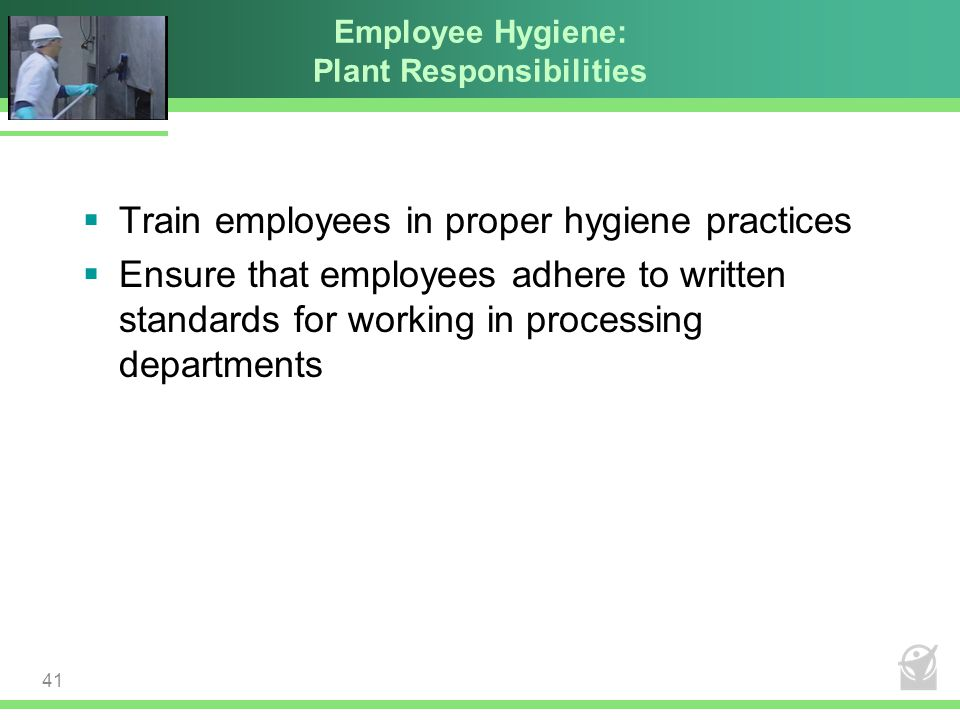 Employee Hygiene: Plant Responsibilities  Train employees in proper hygiene practices  Ensure that employees adhere to written standards for working