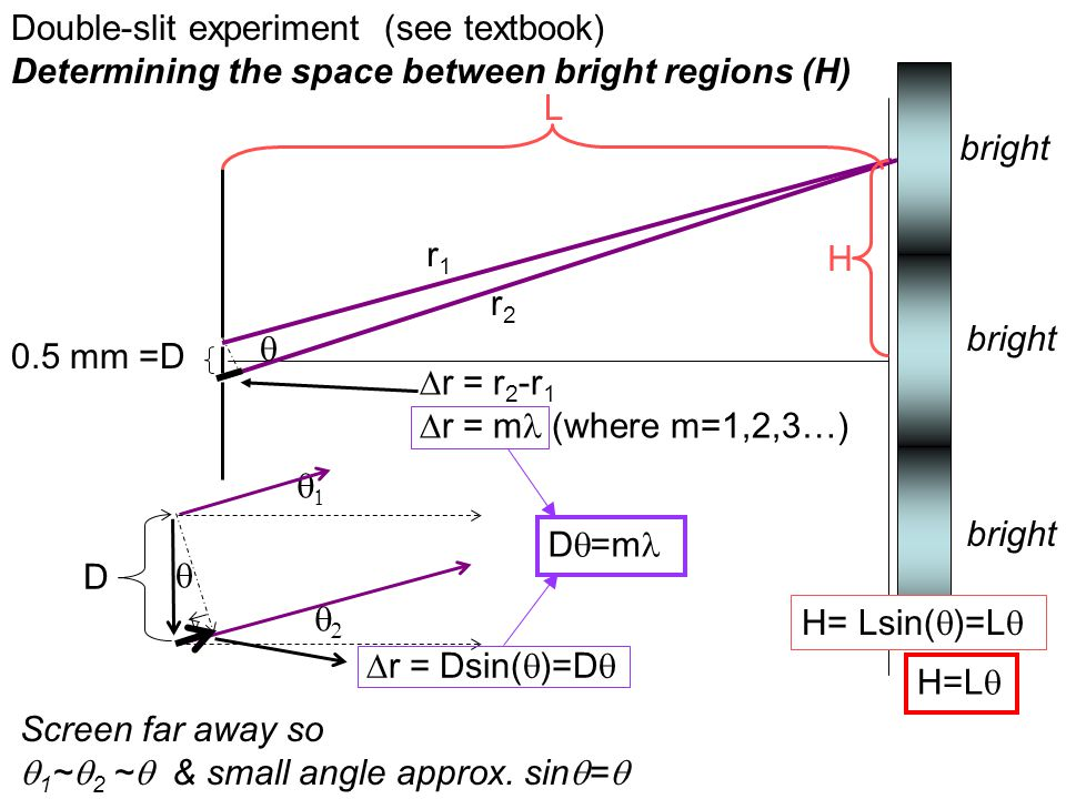 Double-slit experiment (see textbook) Determining the space between bright regions (H) 0.5 mm =D r1r1 r2r2  H L Screen far away so  1 ~  2 ~  & sm