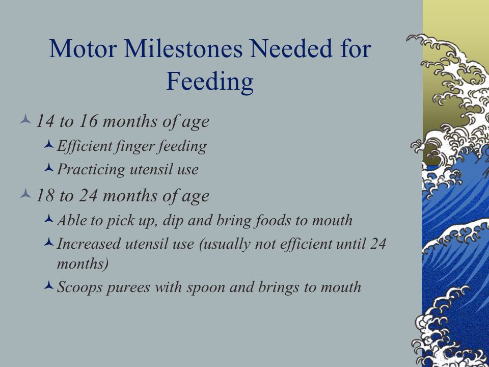 Motor Milestones Needed for Feeding 14 to 16 months of age Efficient finger feeding Practicing utensil use 18 to 24 months of age Able to pick up, dip and bring foods to mouth Increased utensil use (usually not efficient until 24 months) Scoops purees with spoon and brings to mouth
