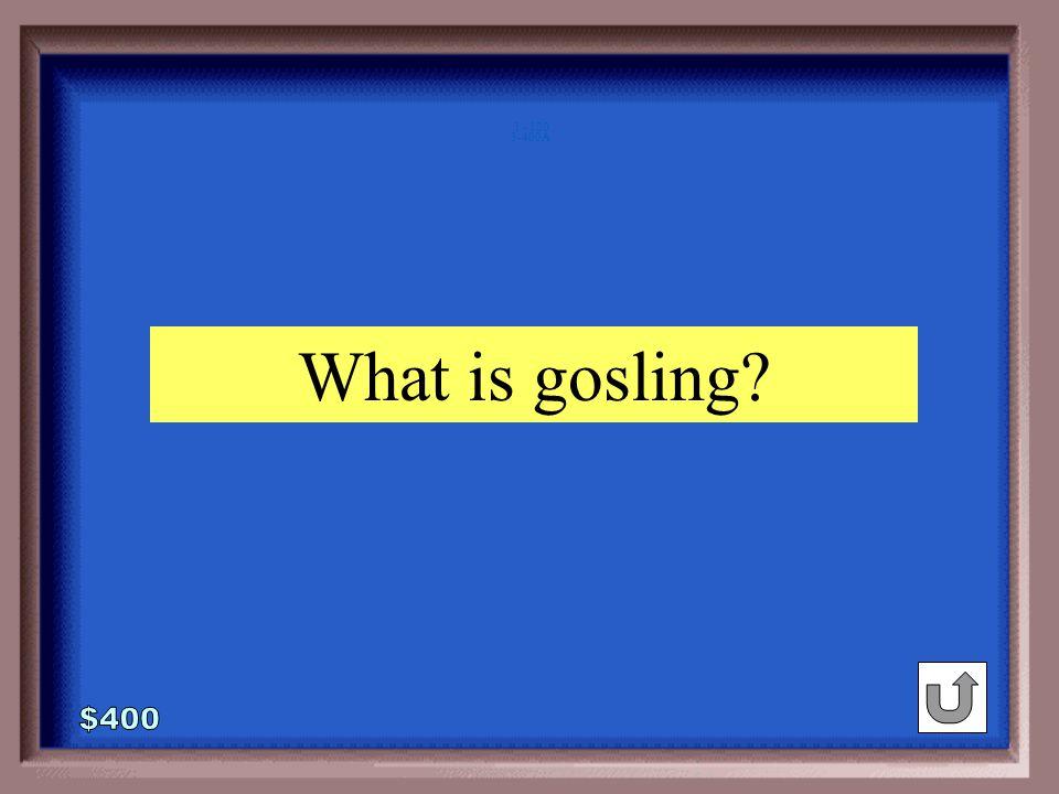 3-400 rabbit : bunny :: goose :_____ whelp gosling duckling