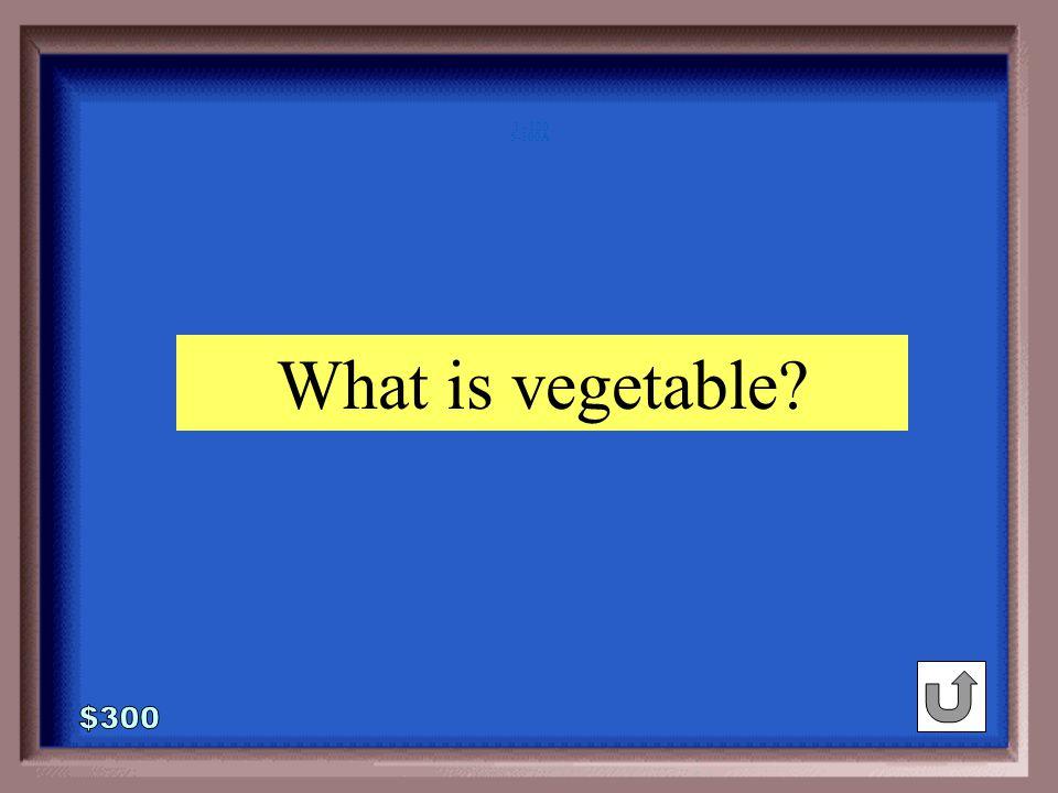 5-300 Pacific : ocean :: broccoli : ____ salty vegetable green