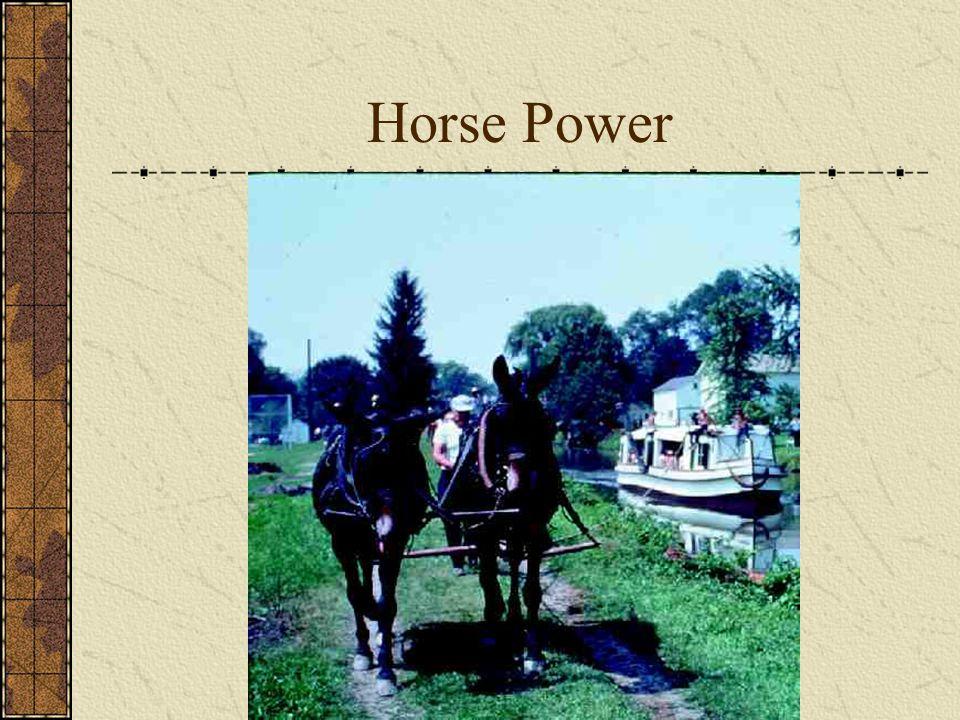 Horse Power