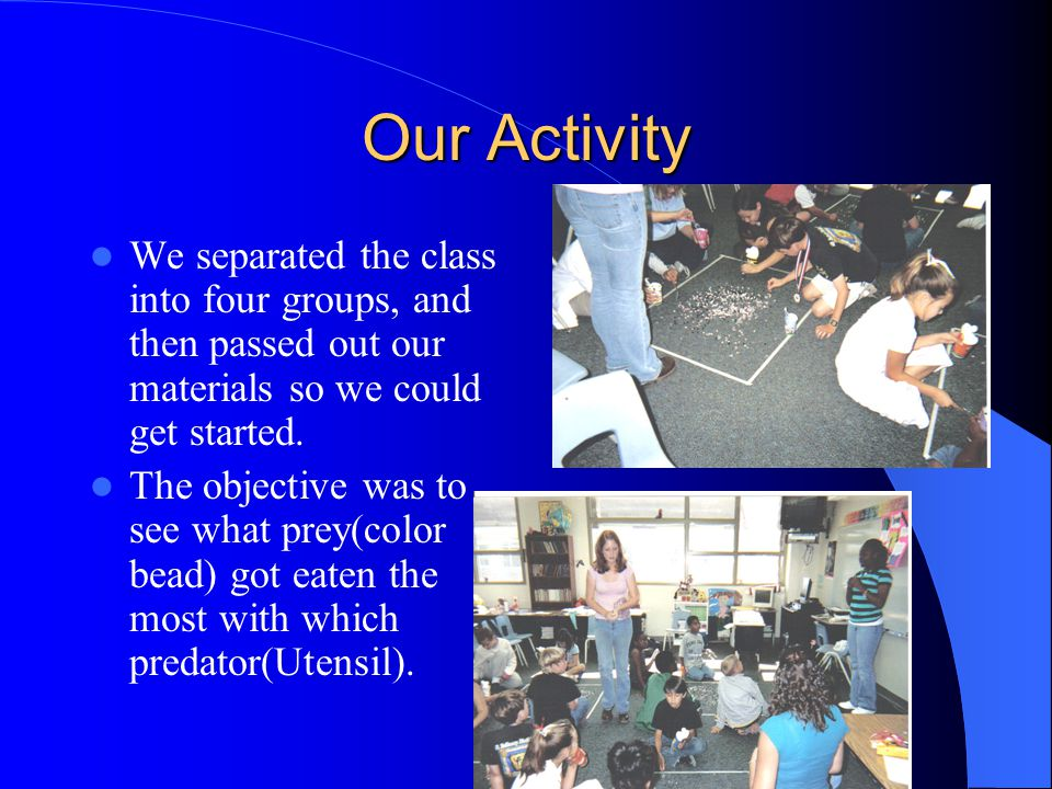 Our Activity We separated the class into four groups, and then passed out our materials so we could get started.