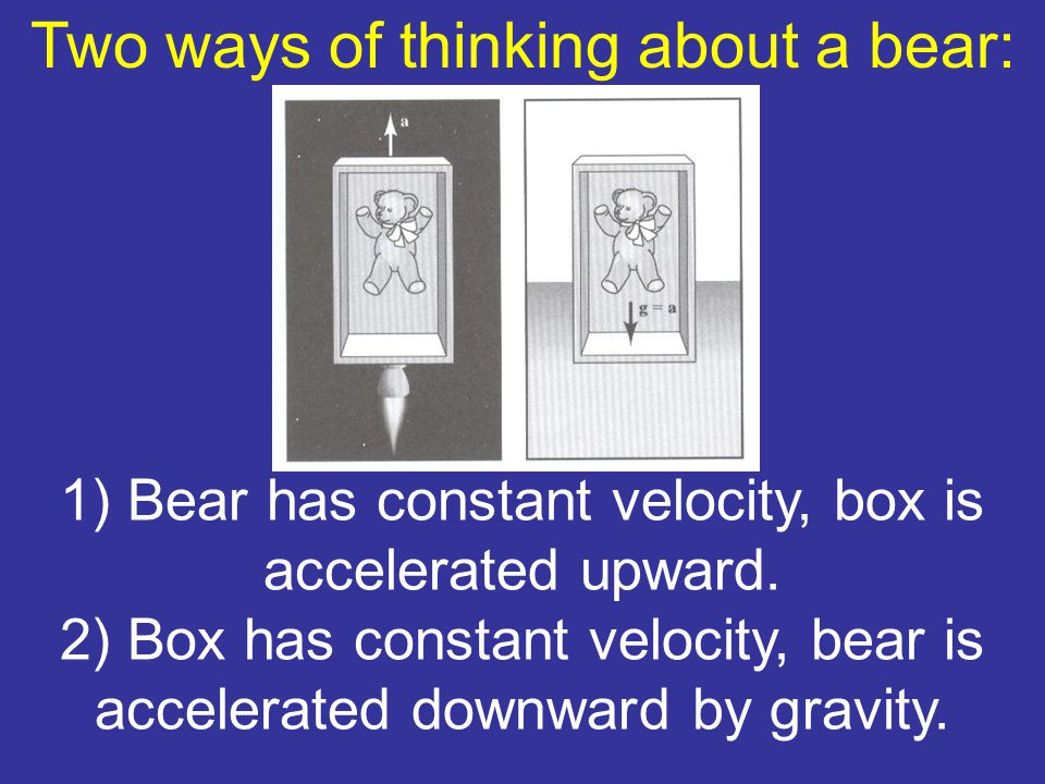Two ways of thinking about a bear: 1) Bear has constant velocity, box is accelerated upward.