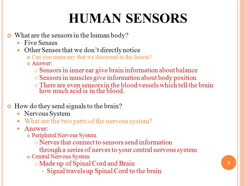 HUMAN SENSORS What are the sensors in the human body? Five Senses Other Senses that we don't directly notice Can you name any that we discussed in the