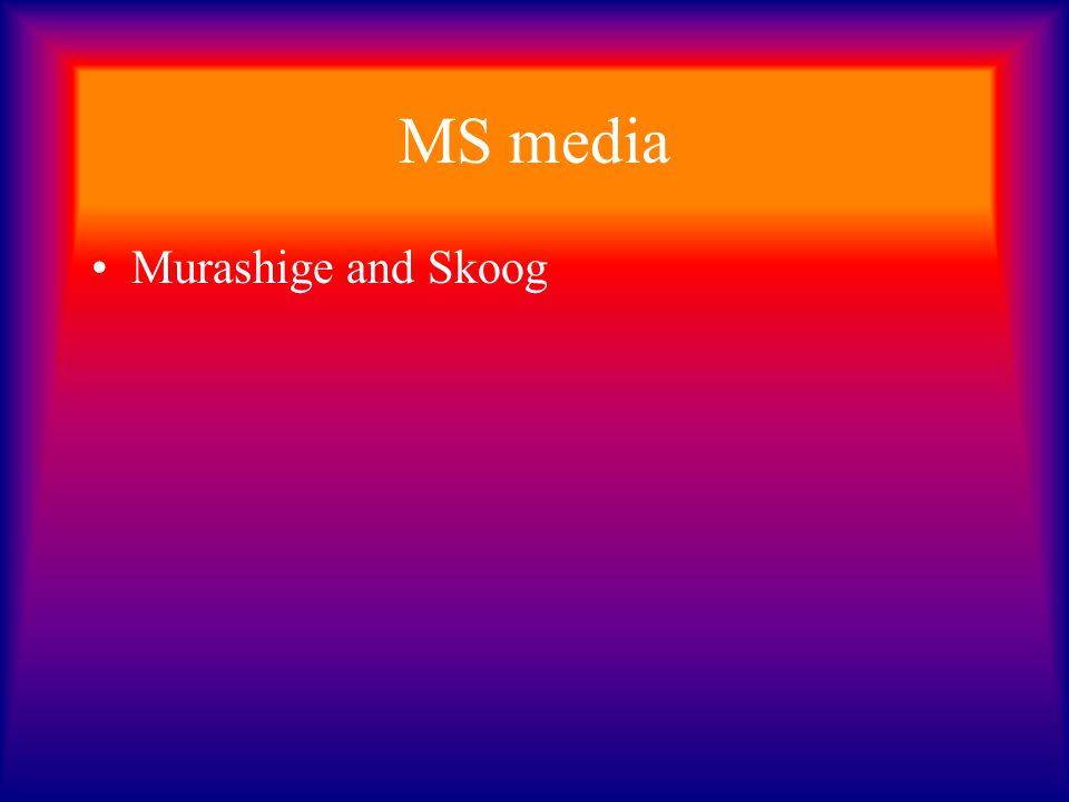 MS media Murashige and Skoog
