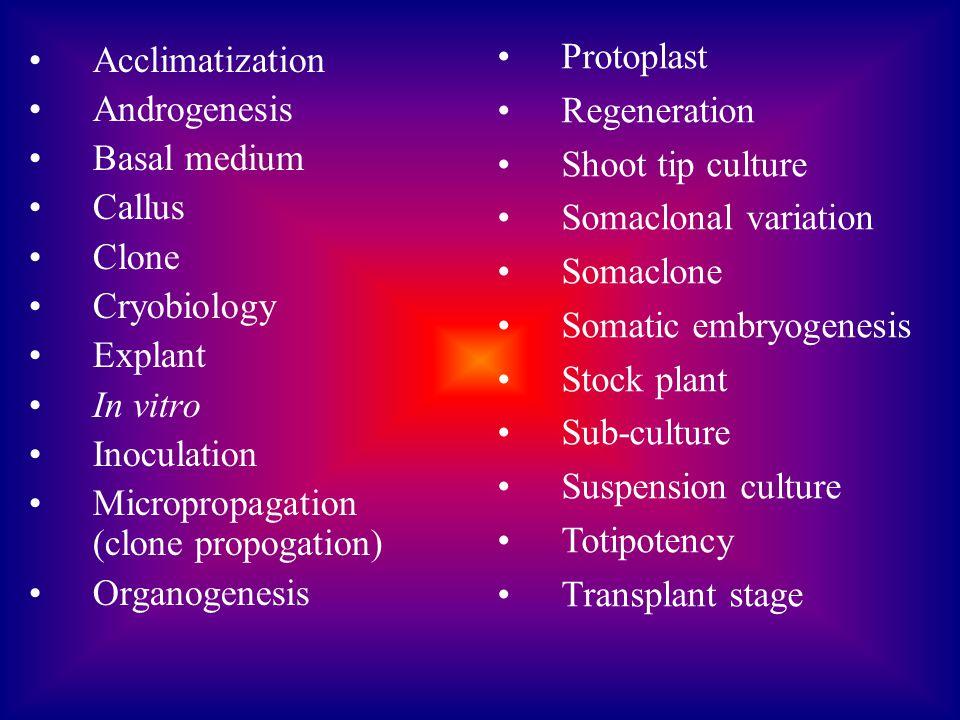 Acclimatization Androgenesis Basal medium Callus Clone Cryobiology Explant In vitro Inoculation Micropropagation (clone propogation) Organogenesis Pro