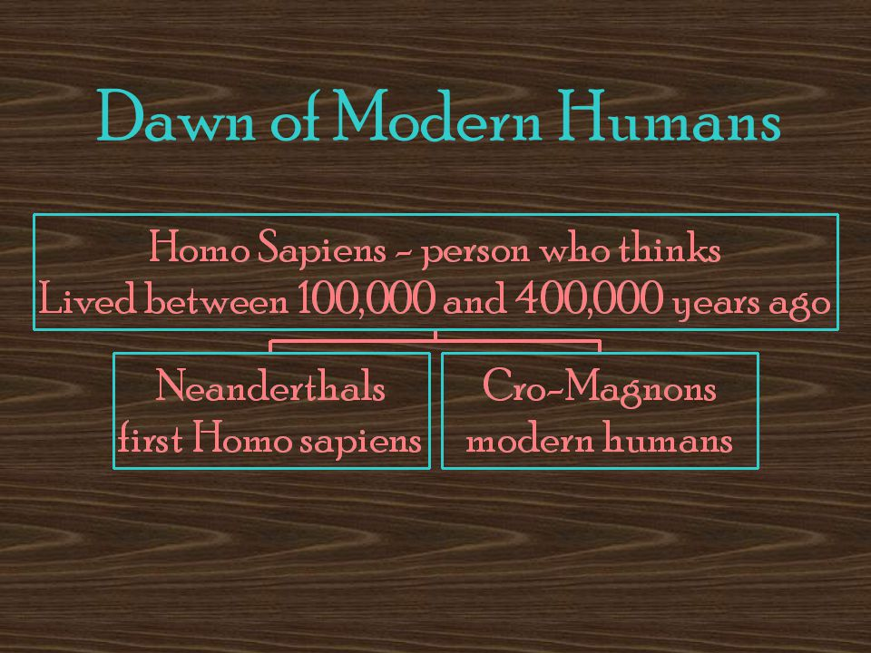 Dawn of Modern Humans