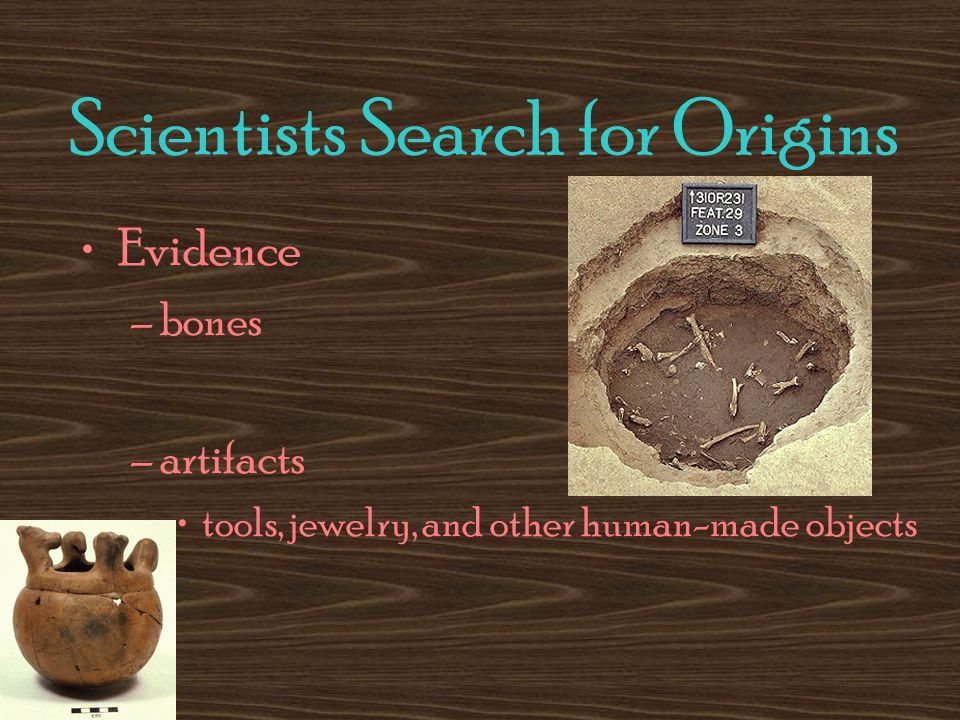 Scientists Search for Origins Evidence –bones –artifacts tools, jewelry, and other human-made objects